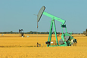 Oil pump jack and wheat field<br /> Carlyle<br /> Saskatchewan<br /> Canada