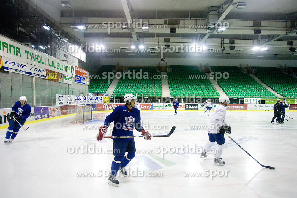 David Rodman at first practice of Slovenian National Ice hockey team before World championship of Division I - group B in Ljubljana, on April 5, 2010, in Hala Tivoli, Ljubljana, Slovenia.  (Photo by Vid Ponikvar / Sportida)