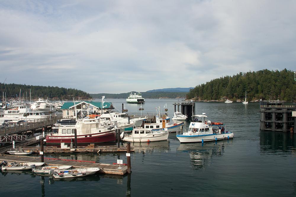 United States, Washington, San Juan Island, Friday Harbor, boats in marina at the Port of Friday Harbor.