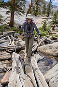 Trekking poles assist a hiker crossing logs at the outlet of Blue Lake in John Muir Wilderness, Inyo National Forest, Sierra Nevada, California, USA. In the Bishop Creek watershed, enjoy a scenic hike from Lake Sabrina to beautiful Blue Lake, Emerald Lakes, and Dingleberry Lake. The good trail is 8.5 miles round trip with 1850 feet cumulative gain. (Beyond Dingleberry Lake, the trail splits to Midnight Lake and Hungry Packer Lake.) For licensing options, please inquire.