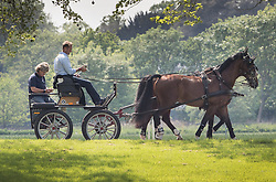 © Licensed to London News Pictures. 08/05/2018. London, UK. Carriage drivers look at their mobile phones as they exercise their horses by the River Thames near Datchet ahead 75th Royal Windsor Horse Show. The five day event takes place in the grounds of Windsor Castle. The Queen and the Duke of Edinburgh usually attend. Photo credit: Peter Macdiarmid/LNP