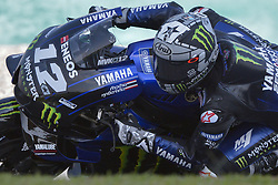 February 7, 2019 - Sepang, Malaysia - Yamaha Factory Racings rider Maverick Vinales of Spain takes a corner during the second day of the 2019 MotoGP pre-season testing at Sepang International Circuit February 7, 2019. (Credit Image: © Zahim Mohd/NurPhoto via ZUMA Press)