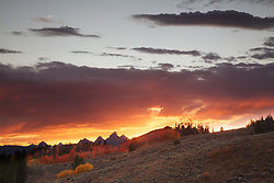 """Autumn Sunset, red aspens, Grand Tetons<br /> <br /> For production prints or stock photos click the Purchase Print/License Photo Button in upper Right; for Fine Art """"Custom Prints"""" contact Daryl - 208-709-3250 or dh@greater-yellowstone.com"""