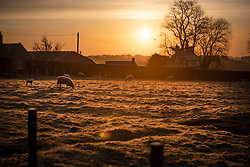 © Licensed to London News Pictures. 23/03/2020. Guyzance, UK. Sunrise on a frosty morning on farmland near the hamlet of Guyzance in Northumberland, northern England. Photo credit: Ben Cawthra/LNP