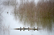 Nederland, Kekerdom, 27-12-2012Het water van de rivieren Maas, IJssel en Waal stijgt weer. Beeld uit de Ooijpolder bij Nijmegen.Foto: Flip Franssen/Hollandse Hoogte