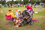 Owners and there dogs at Climping dog show.