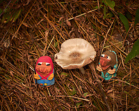 Mushroom Hunting Trolls found a Big One. Image taken with a Leica CL camera and 55-135 mm lens (ISO 100, 135 mm, f/4.5, 1/320 sec).