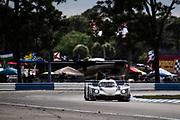 March 20, 2021. IMSA Weathertech Mobil 1 12 hours of Sebring: #01 Cadillac Chip Ganassi Racing, Renger van der Zande, Scott Dixon, Kevin Magnussen