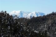 View of snow covered tree tops and Japanese Alps, Jigokudani National Park, Nagano, Honshu, Asia, Japanese Macaque, Habitat, Macaca, fuscata