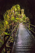 Entrance to the Thurston Lava Tube, (Nāhuku) Kilauea Volcano, Hawai'i Volcanoes National Park, The Big Island, Hawaii