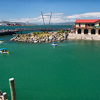 View on the waterfront and the harbour of Wellington.