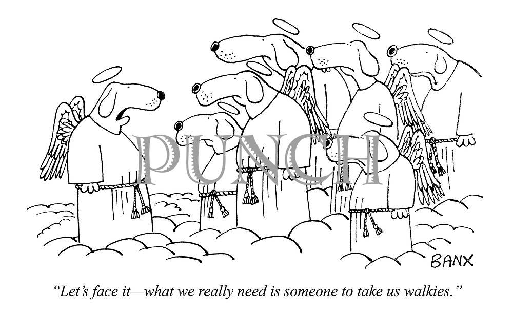 """""""Let's face it - what we really need is someone to take us walkies."""""""