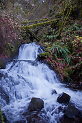 Shepherd's Dell State Park near Portland, OR