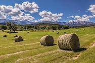 Hay harvest, near Ridgway, Colorado, San Juan Mountains on horizon