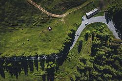 THEMENBILD - eine Kuhherde auf einer Almweide neben der Strasse. Die Hochalpenstrasse verbindet die beiden Bundeslaender Salzburg und Kaernten und ist als Erlebnisstrasse vorrangig von touristischer Bedeutung, aufgenommen am 11. Juni 2020 in Fusch a.d. Glstr., Österreich // a herd of cows on an alpine pasture beside the road. The High Alpine Road connects the two provinces of Salzburg and Carinthia and is as an adventure road priority of tourist interest, Fusch a.d. Glstr., Austria on 2020/06/11. EXPA Pictures © 2020, PhotoCredit: EXPA/ JFK