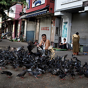 May 09, 2013 - Yangon, Myanmar: A local man feeds corn to pigeons en central Yangon. (Paulo Nunes dos Santos/Polaris)