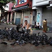 May 09, 2013 - Yangon, Myanmar: A local man feeds corn to pigeons en central Yangon. (Paulo Nunes dos Santos/Polaris)
