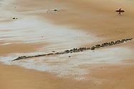 Loredo. Playa de Langre