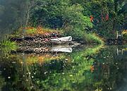 Blind Brook at Dawn