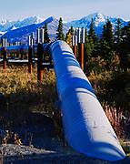 Trans Alaska Pipeline emerging from ground south of Pump Station 10 (MP 586.9), mountains of the Alaska Range near Isabel Pass beyond, Alaska.