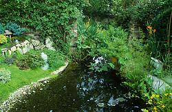Pond in oriental stlye garden