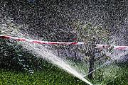 Water spraying from a sprinkler