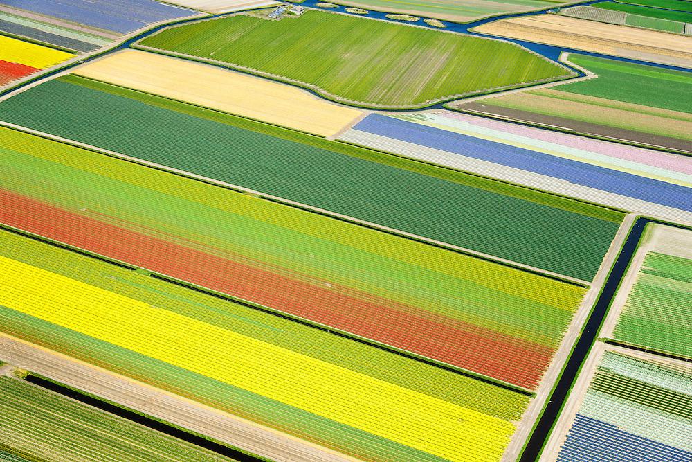 Nederland, Zuid-Holland, Bollenstreek, 09-04-2014; Bloembollenvelden tussen Noordwijkerhout, Lisse en Sassenheim.<br /> Door de extreem zachte winter staan bollenvelden begin april 2014 al in bloei. <br /> Dutch pride in the spring: the tulip fields in Lisse and environment.<br /> Due to the extremely mild winter, the bulbs are already in bloom in early April 2014<br /> luchtfoto (toeslag op standard tarieven);<br /> aerial photo (additional fee required);<br /> copyright foto/photo Siebe Swart