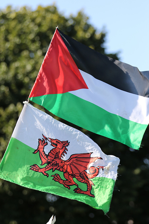 Palestinian and Welsh flags at the rally in Jubilee Gardens, next to Cardiff City Stadium where Wales played Israel in the qualifying round of the 2015/2016 UEFA Championships.