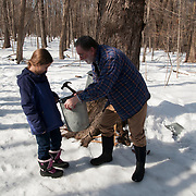 Maple sugaring demonstration at Ipswich River Wildlife Sanctuary