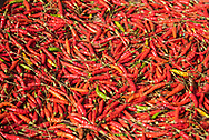Chili peppers drying in the sun in Luang Prabang.