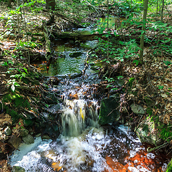 Benton, PA, USA - June 15, 2013: A mountain stream in Pennsylvania's Ricketts Glen State Park.