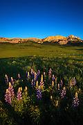 Sunrise at Sawtooth Mountain, Rocky Mountain Front, Montana