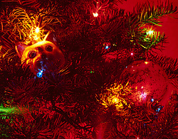 Detail of the Christmas tree at the Cameron/Kirkwood house in Oakland, Calif., December 2015. (Photo by D. Ross Cameron)
