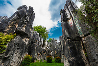 The Stone Forest, limestone formations at Shilin, Yunnan Province, China. Looking like stalagmites or petrified trees gave the formations the name.