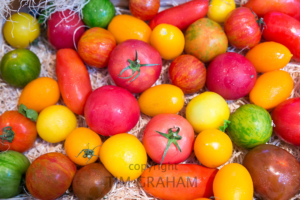 Colourful variety of artisan tomatoes, salad vegetables, on display for sale in food market on Ile de Re, France