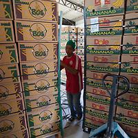 Boxes of organic bananas at the BOS coop plant in Salitral, Piura, Peru