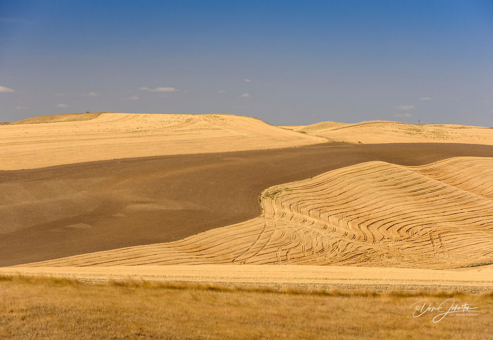 Palouse landscape in late summer, after harvest, Whitman County, Washington, USA