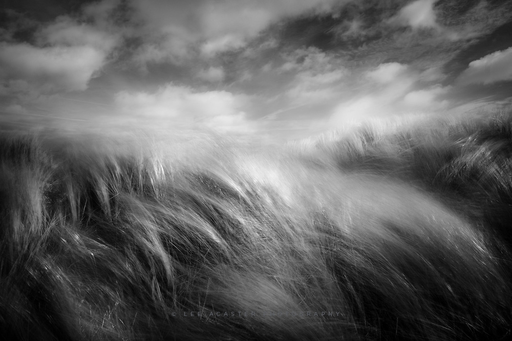 A lovley day at the beach with the kids yesterday, which means a guarantee of great light. Managed to get 10 minutes up on the dunes getting sandblasted with the camera though