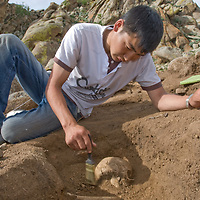 A Smithsonian Museum archaeology team unearths a skull in a 2700+ year-old, khirigsur burial mounds at site above Delger River, near Muren, Mongolia. <br /> (Pictured is Mongolian archaeology student, Manlaibaatar Sundev).