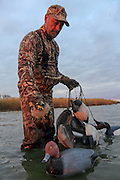 Picking up decoys after an evening hunt on the Delta Marsh in Manitoba.