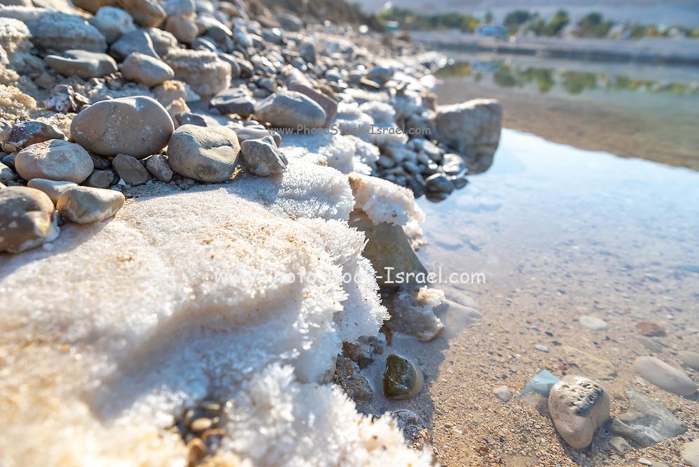 Israel, Dead Sea, salt crystalization caused by water evaporation