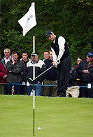 Photograph: Scott Heavey<br />Volvo PGA Championship At Wentworth Club. 23/05/2003.<br />Trevor Immelman chips in a delightful eagle  on the 5th