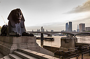 Bronze Sphynx guarding Cleopatra's Needle, made in Egypt for the Pharaoh Thotmes III in 1460 BC and brought to London from Alexandria the royal city of Cleopatra in 1878 photographed on the empty Embankment during the coronavirus pandemic on the 10th May 2020 in London, United Kingdom. Britain wanted something big and noticeable to commemorate the British victory in Egypt over Napoleon, sixty-three years earlier. At low tide you can step to the platform on the River side and place flower heads on the platform as an offering to the Thames Isis Goddess and wait. The rising water will splash up the steps then gradually over the platform from each side. When the two washes meet in the middle they slap together and form dual ripples which carry the flowers away. This huge granite structure was engineered precisely to do this and hidden in plain sight for those that can see.
