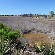 Black Point in the Merrit Island Wildlife Refuge in Merritt Island, Florida. (AP Photo/Alex Menendez) Florida scenic highway photos from the State of Florida. Florida scenic images of the Sunshine State.