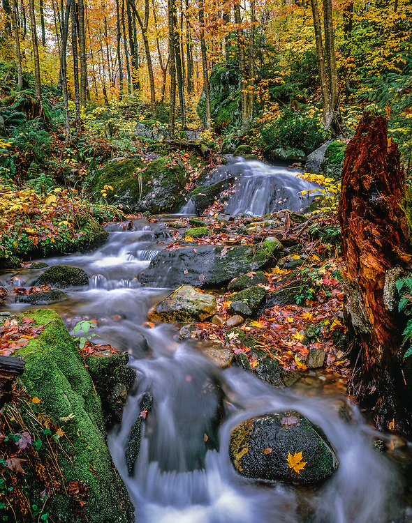 Headwaters of the West Branch of White River, cascades in fall, Green Mountain National Forest, VT