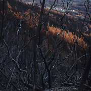 Many villages were surrounded by the wildfires.