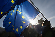 Two days before Brexit Day (the date of 31st January 2020, when the UK legally exits the European Union), Remain protesters' flags fly outside parliament, in Parliament Square, Westminster, on 29th January 2020, in London, England.