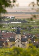 Village of Le Mesnil-sur-Oger in France