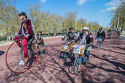 """On the Mall. The Tweed Run 2015 - it's 7th annual British public bicycle ride through London's historic streets, with a prerequisite that participants are dressed in their best tweed cycling attire. There are also plenty of handle bar moustaches, penny farthings and Union Jacks. """"Guests can expect a leisurely day cycling, stopping at some of London's most iconic landmarks to enjoy a spot of tea, a picnic in the park and finally a jolly good knees-up in a beautiful art-deco ballroom for the Tweed Run closing ceremony. Starting at Trafalgar Square, the cyclists then embarked on a 12 mile scenic ride through London, stopping at traditional spots."""