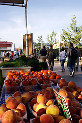 Stock photo of containers of peaches and tomatoes at the organic market in the park
